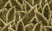 Bird of paradise papel de parede Arte wallpaperkit