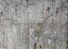 Concrete with cracks fototapet AS Creation verdenskort