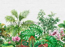 Tropical wall I fotobehang AS Creation Bloemen Planten