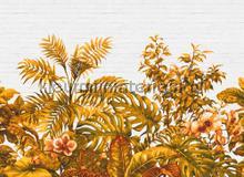 Tropical wall II fotobehang AS Creation Bloemen Planten