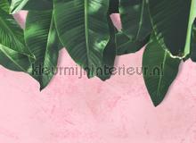 Leaves wall fotobehang AS Creation Bloemen Planten
