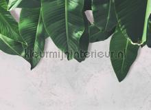 Leaves wall tapet AS Creation Designwalls dd118547