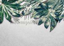 Leaves variety II fotobehang AS Creation Bloemen Planten