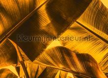 Broken Leaf II fotobehang AS Creation Bloemen Planten