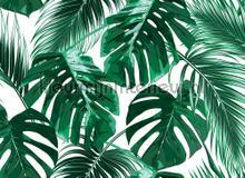 Palm leaves I fotobehang AS Creation Bloemen Planten