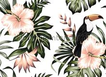 Toucan I fototapeten AS Creation weltkarten
