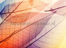Limpid leaf I fotobehang AS Creation Bloemen Planten