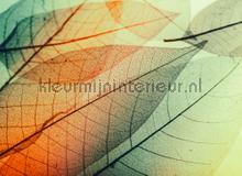 Limpid leaf II fotobehang AS Creation Bloemen Planten