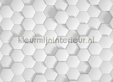 Honey comb 1 fotobehang AS Creation Grafisch Abstract