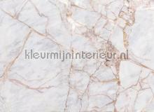 Gray light marble fotomurais AS Creation todas as imagens