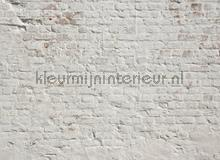 105334 fotobehang AS Creation York Wallcoverings