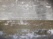 105337 fotobehang AS Creation York Wallcoverings