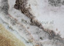 105341 fotobehang AS Creation York Wallcoverings