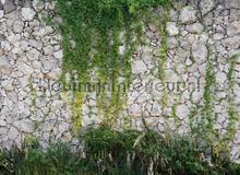 105342 fotobehang AS Creation York Wallcoverings