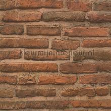 Sfeervolle terrabruine bakstenen muur tapeten AS Creation uni farben