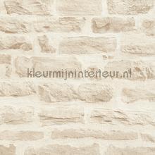 Lichte rustieke stenen muur tapeten AS Creation uni farben