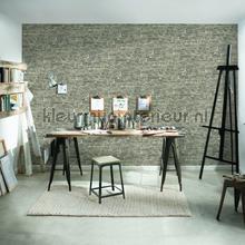 Levendige grijsbeige muur behang AS Creation Stenen