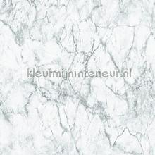 Marmer grijs geaderd tapeten AS Creation uni farben