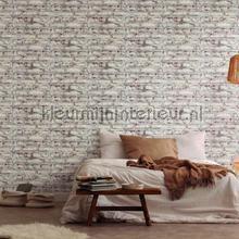 Oude geschildere muur behang AS Creation Stenen