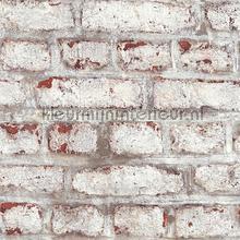 Oude geschildere muur tapeten AS Creation uni farben