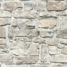 Rustieke muur tapeten AS Creation uni farben