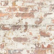 Bakstenen met gebaldderd stuckwerk tapeten AS Creation uni farben