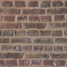 Authentieke muur tapeten AS Creation uni farben