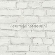 Witte muur tapeten AS Creation uni farben