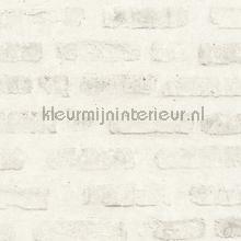 Witte steen met grote veogen behang AS Creation Stenen