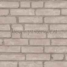 Beige muur met weinig opvallende voegen behang AS Creation Stenen
