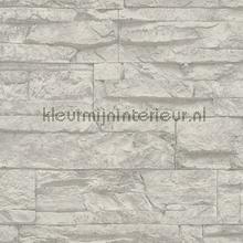 Ruwe natuurstenen muur papier peint AS Creation wallpaperkit