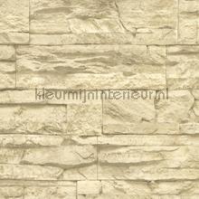 Ruwe natuurstenen muur behang AS Creation Stenen
