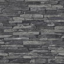 Rustieke lei stenen muur papier peint AS Creation wallpaperkit