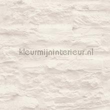 Ongelijkmatige stenen muur behang AS Creation Stenen