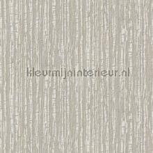 Silk texture grey behang Dutch Wallcoverings Embellish DE120082