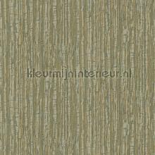 Silk texture green behang Dutch Wallcoverings Embellish DE120085