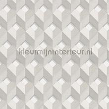 Cube design behang Dutch Wallcoverings Embellish DE120131