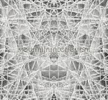 Spider Web fototapeten Atlas Wallcoverings alle bilder