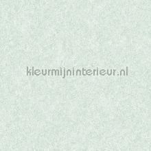 Velvet light blue carta da parati Dutch Wallcoverings Fabric Touch FT221235