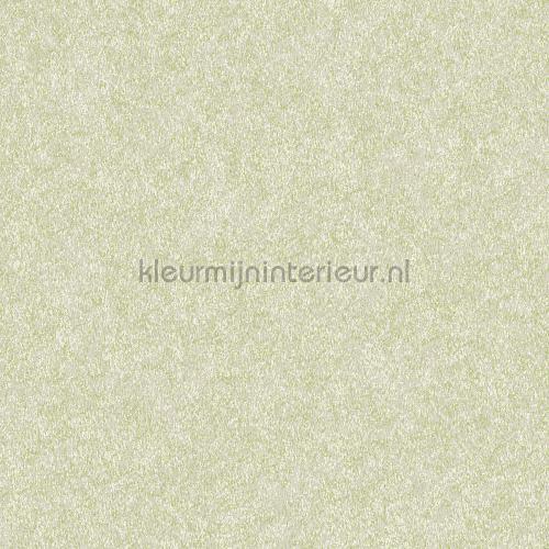 Velvet green tapeten FT221237 uni farben Dutch Wallcoverings