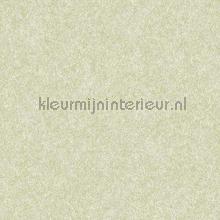 Velvet green carta da parati Dutch Wallcoverings Fabric Touch FT221237
