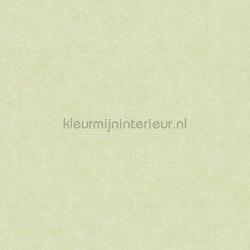 Linen green wallcovering FT221268 plain colors Dutch Wallcoverings