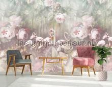 Flamingo Found light fotobehang Behang Expresse York Wallcoverings
