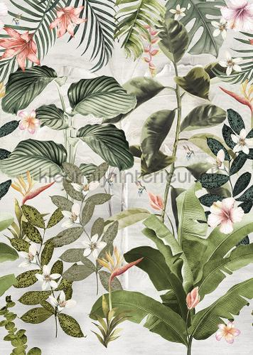 Magufuli Green behang ink7556 bladmotief Behang Expresse
