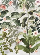 Magufuli Green fotobehang Behang Expresse York Wallcoverings