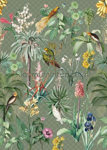 Tropical Winter papier peint ink7557 romantique moderne Behang Expresse