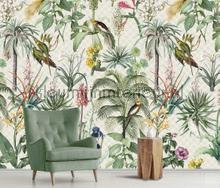Tropical morning fotobehang Behang Expresse York Wallcoverings