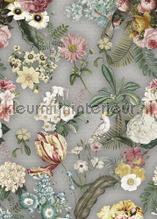 Costa Rica Votanical Gray tapeten Behang Expresse Floral Utopia ink7582