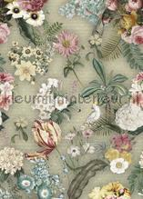 Costa Rica Votanical Moss tapeten Behang Expresse Floral Utopia ink7583