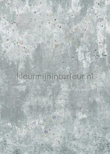 Magnoliia Walls uni wallcovering ink7593 romantic modern Behang Expresse